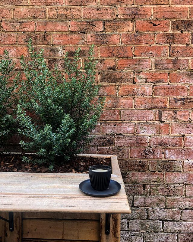Don't for get boys and girls, we're open all day today (kitchen closes @ 2) then closed tomorrow! ...#coffee #cafe #coffeehouse #publicholidays #huskeecup #roxcoffee #hamilton #victoria #3300 #laneway #courtyard #alfrescodining