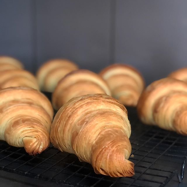 Monday's never looked so tasty! @janedoughwarrnambool croissants fresh out of the oven this morning! ....#roxburgh #monday #croissant #supportlocal #pastry #freshcroissants #foodie #hamilton #cafe #lanewaycafe #3300 #layersfordays